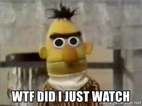 WTF Did I Just Watch Bert
