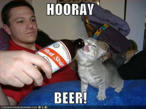 Hooray Beer